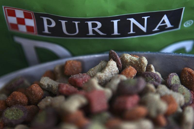Purina PetCare, la division de nutrition animale de Nestlé, pourrait supprimer environ 200 emplois en France via des départs volontaires et réfléchit à l'avenir de son usine de Quimperlé, en Bretagne, notamment à une vente. /Photo d'archives/REUTERS/Edgard Garrido